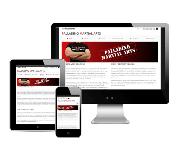 Palladino Martial Arts 3 Device Web Design Screenshot